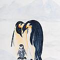 Penguin Family by Elvira Ingram