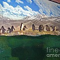 Penguins On Ice by Marian Bell