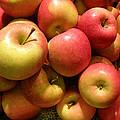 Pennsylvania Apples by Jean Hall