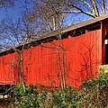 Pennsylvania Country Roads - Wagoners Covered Bridge Over Bixlers Run - Perry County by Michael Mazaika