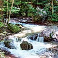 Pennsylvania Creek by Marcel  J Goetz  Sr