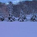 Pennsylvania Snowy Wonderland by David Dehner