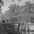 Pennyfield Lock Chesapeake And Ohio Canal by Thomas Marchessau
