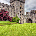 Castle Grounds by Adrian Evans