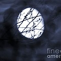 Pentacle Moon by Roxy Riou