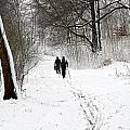 People On Ski  In Snowy Landscape by Jean Schweitzer