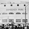 People Outside A Baseball Park, Old by Panoramic Images