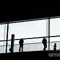People Silhouettes In Airport by Konstantin Sutyagin