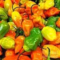 Peppers by WaLdEmAr BoRrErO