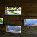 Perch Pond Blind by Allen Sheffield