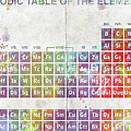 Periodic Table Of The Elements by Paulette B Wright