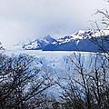 Perito Moreno Glacial Landscape by Michele Burgess