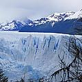 Perito Moreno Glacier by Michele Burgess