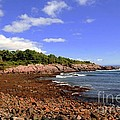 Perkins Cove by Kathleen Struckle
