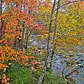 Perkiomen Creek - Perkiomenville Pa - Autumn Foliage by Mother Nature