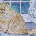 Persian Cat In Kitchen by Gail Dolphin