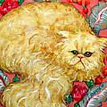 Persian Cat On A Cushion by Rebecca Korpita