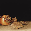 Persimmon by Jenny Barron