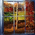 Perspective On Fall  by RC DeWinter