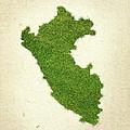 Peru Grass Map by Aged Pixel