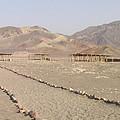 Peru Nazca Bones Site by Coventry Wildeheart