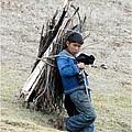 Peruvian Boy Gathers Wood by Barbie Corbett-Newmin