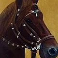 Peruvian Horse by Lisa Bentley