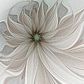 Petal Soft White by Amanda Moore