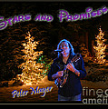 Peter Mayer Stars And Promises Christmas Tour by John Stephens
