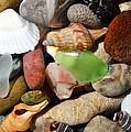 Petoskey Stones L by Michelle Calkins