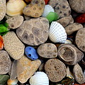 Petoskey Stones V by Michelle Calkins