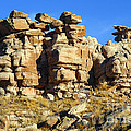 Petrified Forest Rock Formations by Bob Phillips