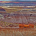 Petrified Log On Overlook Near Blue Mesa In Petrified Forest National Park-arizona   by Ruth Hager
