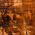Petroglyphs by Helix Games Photography