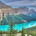 Peyto Lake 2 by Douglas Barnett