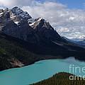 Peyto Lake Canadian Rockies by Bob Christopher