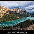 Peyto Lake Poster by Kathleen Bishop