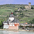 Pfalzgrafenstein With Burg Gutenfels  by Elvis Vaughn