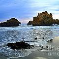 Pfeiffer Beach Big Sur Twilight by Charlene Mitchell