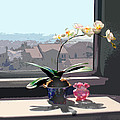 Phalaenopsis Orchid In Sunny Window by Elaine Plesser