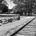 Phelps Ny Train Station In Black And White by William Norton