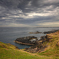 Phillip Island by Kim Andelkovic