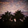 Phoenix Sunset by Brandi Maher