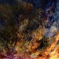 Phoenix Two by Randal Bruck