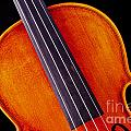 Photograph Of A Upper Body Viola Violin In Color 3369.02 by M K  Miller