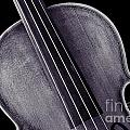 Photograph Of A Upper Body Viola Violin In Sepia 3369.01 by M K  Miller
