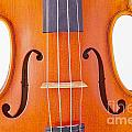 Photograph Of A Viola Violin Middle In Color 3374.02 by M K  Miller