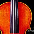 Photograph Or Picture Violin Viola Body In Color 3367.02 by M K  Miller