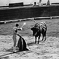 Photographers Including Dick Frontain Bullfight Nogales Sonora Mexico 1969 by David Lee Guss