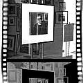 Photographic Artwork Of Woody Allen In A Window Display by Randall Nyhof